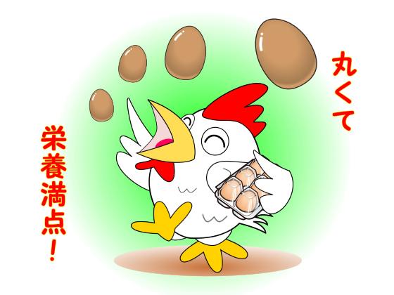 にわとりと丸い卵.jpg