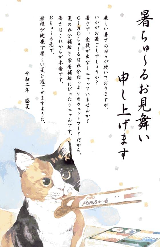 令和2年暑ちゅ~る見舞い.jpg